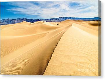 Endless Dunes - Panoramic View Of Sand Dunes In Death Valley National Park Canvas Print by Jamie Pham
