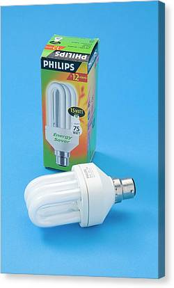Energy-saving Bulb Canvas Print by Trevor Clifford Photography
