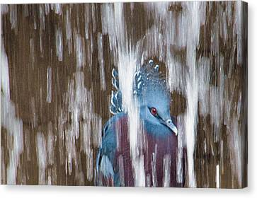Ennui Canvas Print by Tracy Munson