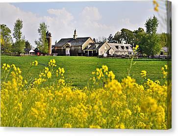 Erdenheim Farm In April Canvas Print by Bill Cannon