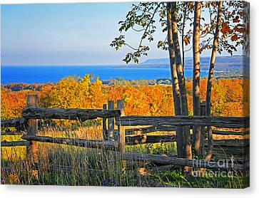 Escarpment Fall Colors Canvas Print by Charline Xia