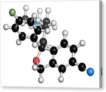 Escitalopram Antidepressant Drug Molecule Canvas Print by Molekuul