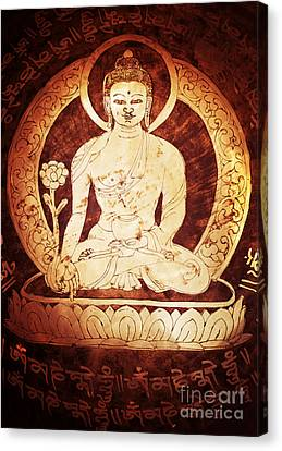 Etched Buddha  Canvas Print by Tim Gainey