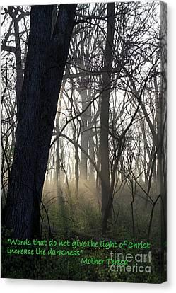 Eternal Light Canvas Print by Rick Rauzi