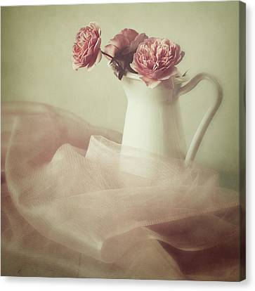Ethereal Canvas Print by Amy Weiss