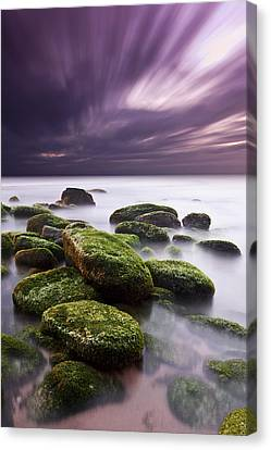 Ethereal Canvas Print by Jorge Maia