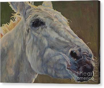Eunice Canvas Print by Patricia A Griffin