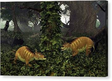 Eurohippus Prehistoric Mammals Canvas Print by Walter Myers