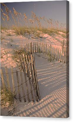 Evening At The Beach Canvas Print by Maria Suhr