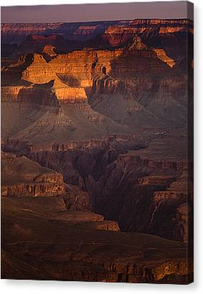 Evening In The Canyon Canvas Print by Andrew Soundarajan