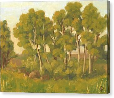 Evening Sets Canvas Print by Bibi Snelderwaard Brion