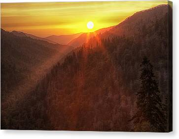 Evening Warmth Canvas Print by Andrew Soundarajan