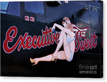 B-25 J Mitchell Executive Sweet Canvas Print by Priscilla Burgers