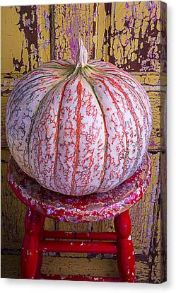 Exotic Pumpkin Canvas Print by Garry Gay