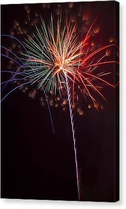 Exploding Colors Canvas Print by Garry Gay