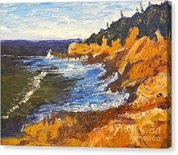 Exploring On The Rocks  Canvas Print by Pamela  Meredith