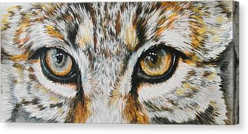 Eye-catching Bobcat Canvas Print by Barbara Keith