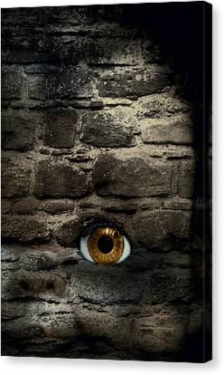 Eye In Brick Wall Canvas Print by Amanda And Christopher Elwell
