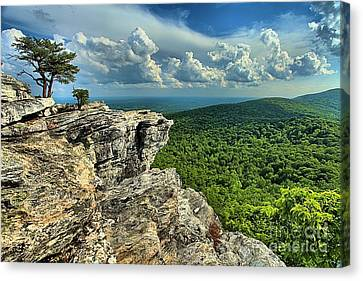 Face In The Cliff Canvas Print by Adam Jewell