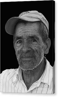 Face Of A Hardworking Man Canvas Print by Heiko Koehrer-Wagner