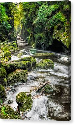 Fairy Glen Canvas Print by Adrian Evans