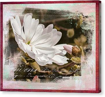 Faith Love And Hope - Flower Art Canvas Print by Jordan Blackstone