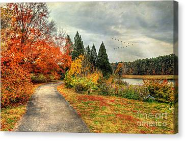 Fall Along Lake Nevin Canvas Print by Darren Fisher