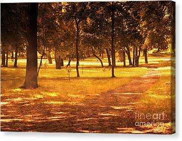 Fall Autumn Park Canvas Print by Michal Bednarek