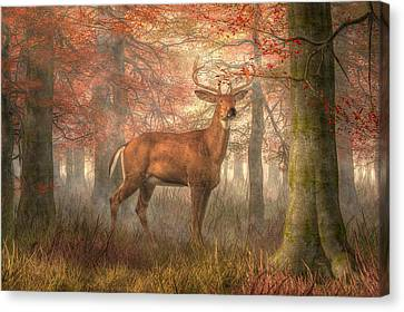 Fall Buck Canvas Print by Daniel Eskridge