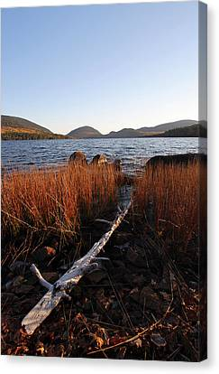 Fall Colors At Eagle Lake In Maine Canvas Print by Juergen Roth