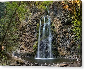 Fall Creek Falls Canvas Print by Leland D Howard