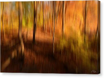 Fall Divine Canvas Print by Lourry Legarde