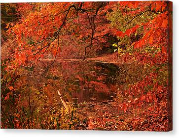 Fall Flavor Canvas Print by Lourry Legarde