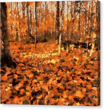 Fall Foliage Canvas Print by Dan Sproul