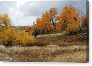 Fall In Montana Canvas Print by Larry Stolle