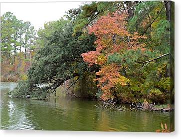 Fall Landscape Around The Lake 3 Canvas Print by Lanjee Chee