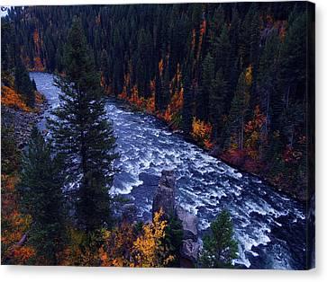 Fall Lined River Canvas Print by Raymond Salani III