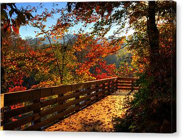 Fall Morning Walk Canvas Print by Greg and Chrystal Mimbs