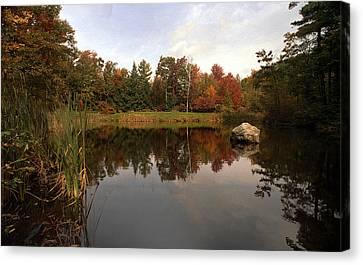 Fall Pond Canvas Print by Skip Willits