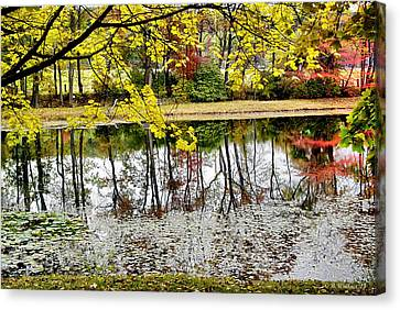 Fall Reflections Canvas Print by Brian Wallace