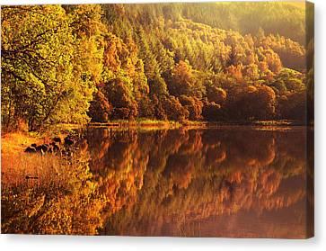 Fall Reflections. Loch Achray. Scotland Canvas Print by Jenny Rainbow