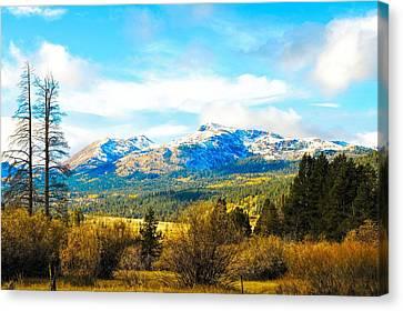 Fall Season In The Sierras Canvas Print by Don Bendickson