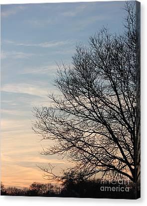 Fall Tree In Dusk Sky Canvas Print by Bill Woodstock