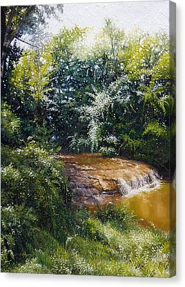 Falls Canvas Print by Gregg Hinlicky