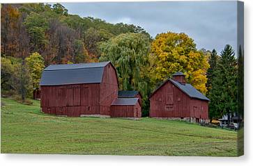 Fall's Here 7k03037c Canvas Print by Guy Whiteley