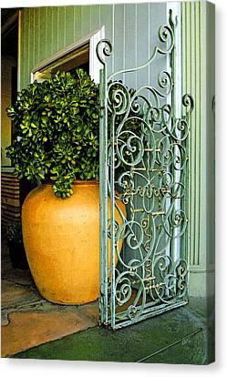 Fancy Gate And Plain Pot Canvas Print by Ben and Raisa Gertsberg