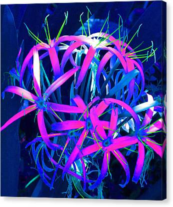 Fantasy Flowers 6 Canvas Print by Margaret Saheed