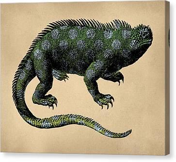Fantasy Iguana Vintage Illustration Canvas Print by Flo Karp