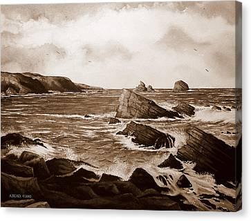 Faraid Head Durness Scotland Canvas Print by Andrew Read