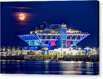 Farewell Moon Canvas Print by Marvin Spates
